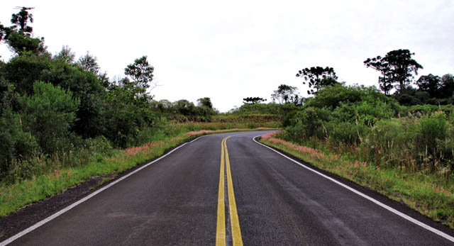 Uganda Government releases sh113.1b for roads maintenance