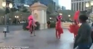 Watch the plumage fly! Befeathered performers quarrel over territory on Las Vegas strip