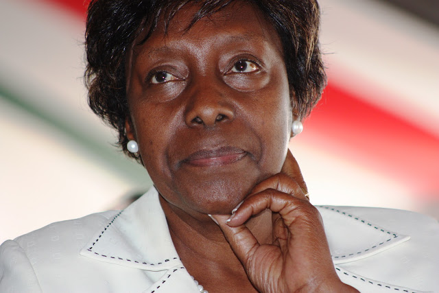 Only ministry can renew land leases, says Ngilu