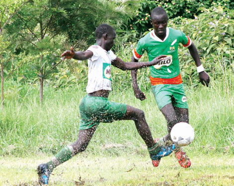 Kenya: Lake Region triumphs in Primary Schools games